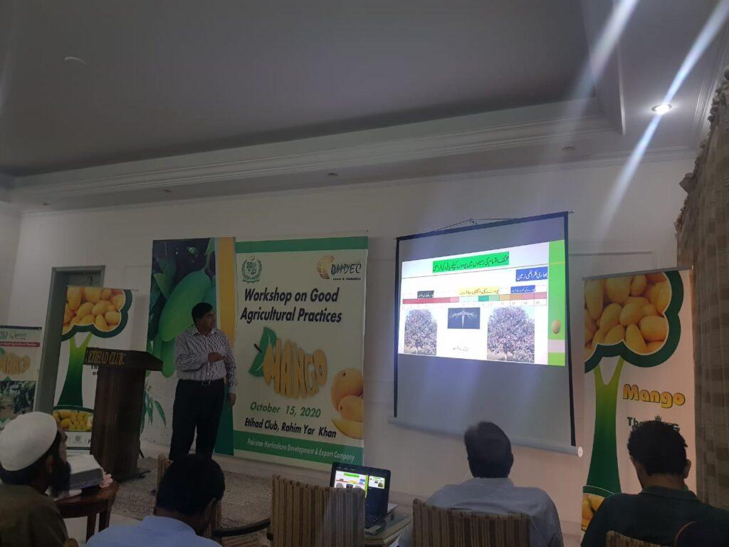 Workshop on Good Agricultural Practices of Mango